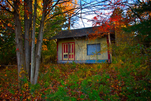 carnival autumn house fall abandoned strange leaves rural forest landscape woods colorful empty shed odd trail unusual orangecounty heritagetrail trailside