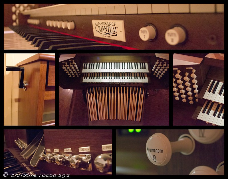 Organ collage