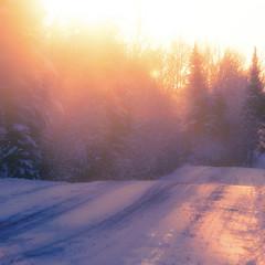 Sur la route en sillons... mes premiers rayons... bonjour soleil... !!!