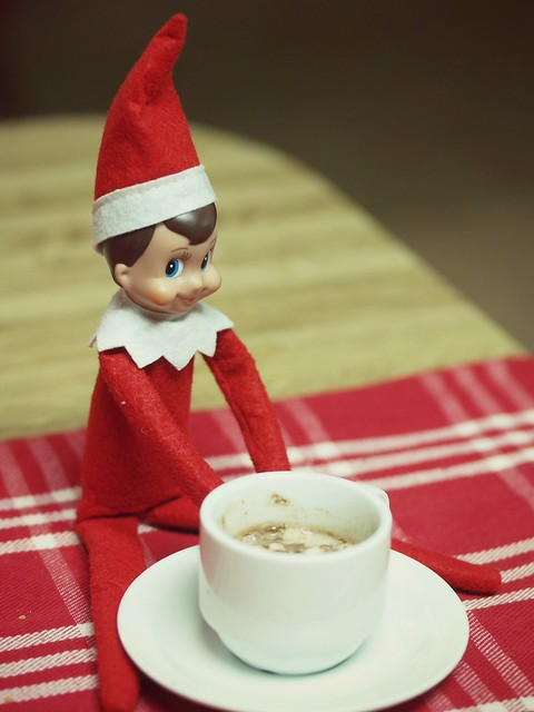 Day 11 : Elf on the Shelf