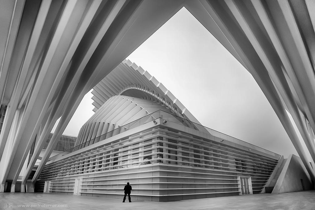 A solas con Calatrava - Palacio de Congresos de Oviedo