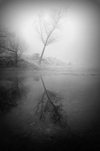 Incline alla nebbia by Claudio61 una foto ferma un ricordo nel tempo