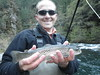 McCloud River Brown trout on a dry fly