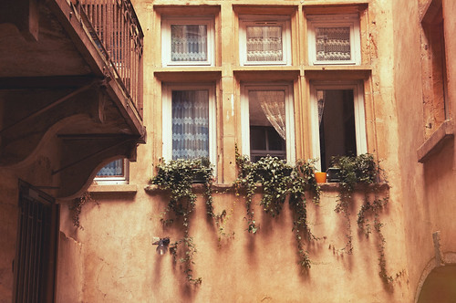 French Sights-2