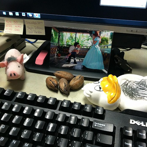 312:365 A colorful spot on my desk... Pics of Meg at WDW, Babe, pecans from a friend, and my duck that holds paperclips.