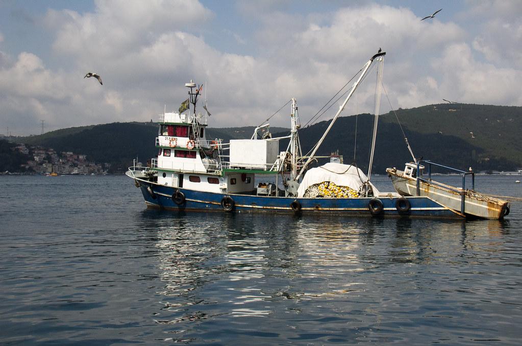 Bosphorus fishing