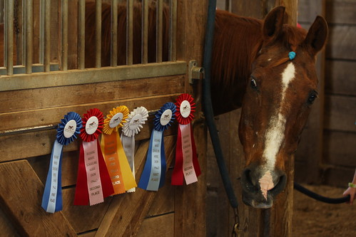 Cody's Ribbons May 2012