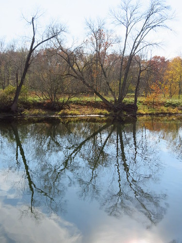 fall reflections scenery laketaneycomo