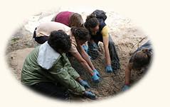 participar como Voluntario