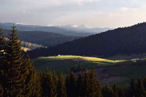 wood sunlight snow mountains green forest sunrise landscape spring nikon scenery europe ray serbia beam highland d200 srbija kamenagora