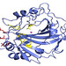 Scientists at the University of Florida and Los Alamos created the carbonic anhydrase II enzyme (blue), which can capture carbon with much greater efficiency. This enzyme could one day play a role in carbon sequestration and biofuel production.