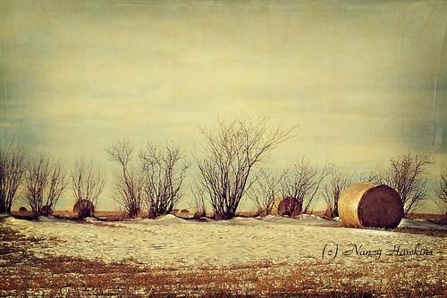 Winter rolled up by Nancy Hawkins