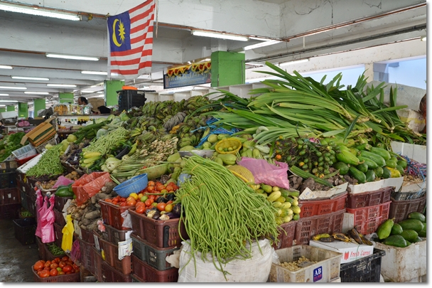 Bountiful of Fresh Vegetables