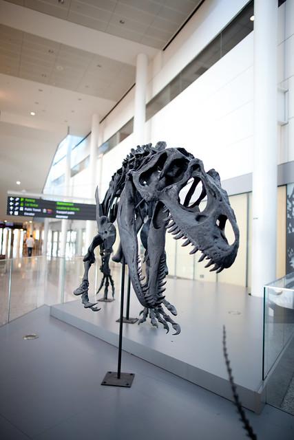 Dinosaur Installation at Toronto Pearson Airport