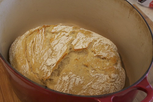 Easy Crusty Bread