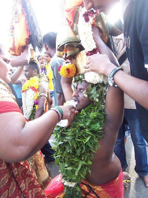 Thaipusam rito indu in malesia