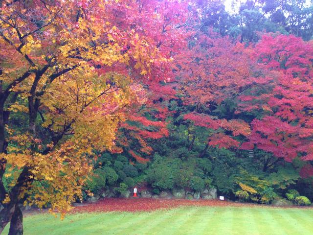 麻生大浦荘の庭園