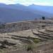 Campo de siembra - Agricultural fields; San Miguel Piedras, Distrito de Nochixtlán, Región Mixteca, Oaxaca, Mexico por Lon&Queta