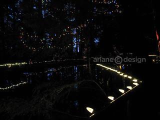 Capilano Suspension Bridge Canyon Lights-4