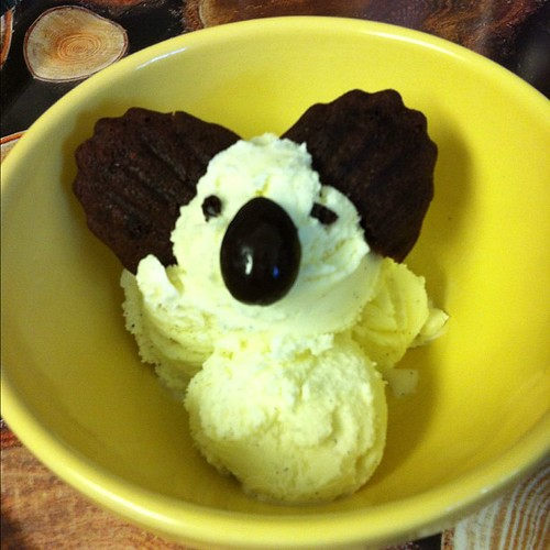 My koala ice cream!