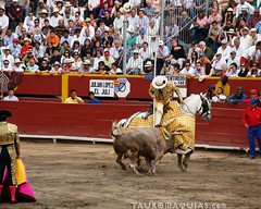 fair(0.0), performance(0.0), bull riding(0.0), animal sports(1.0), rodeo(1.0), cattle-like mammal(1.0), bull(1.0), sport venue(1.0), event(1.0), tradition(1.0), sports(1.0), bullring(1.0), performing arts(1.0), entertainment(1.0), matador(1.0), bullfighting(1.0),