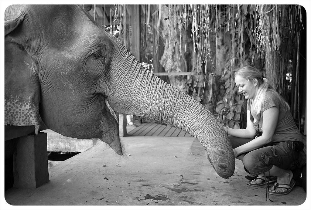 dani & elephant