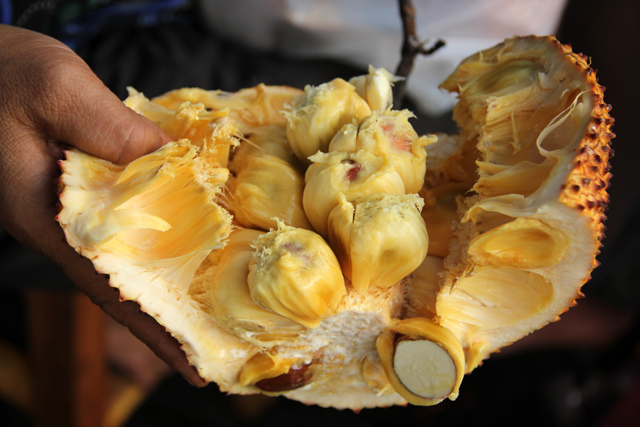 8263422472 09d4a1da7d o Exotic Fruit: Southeast Asian Cempedak