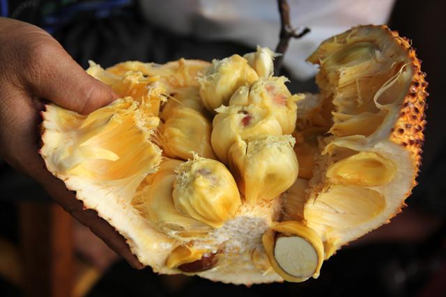 Pieces of cempedak fruit