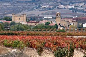 Viñedos de Castillo de Sajazarra.