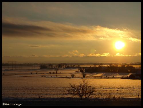schnee winter sun snow lund sol soleil skåne vinter sweden hiver nieve schweden neve invierno neige sverige inverno sonne snö suecia suède svezia linero