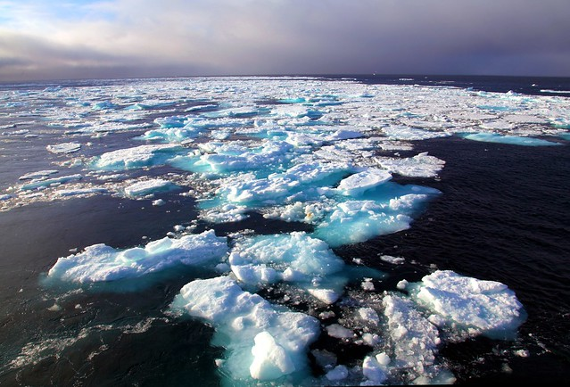 Pack Ice to the Horizon