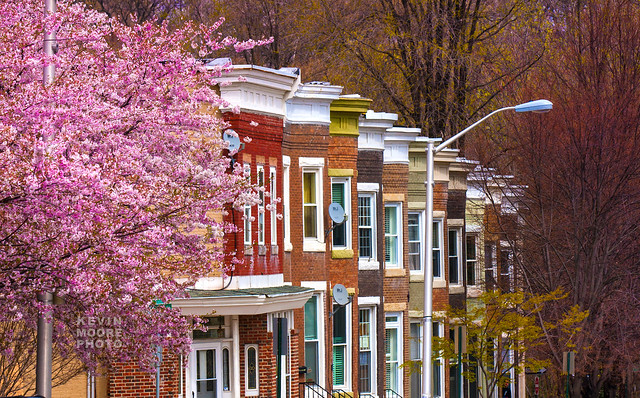 Row Houses In Baltimore Md : Row houses — baltimore maryland flickr photo sharing