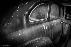 Australian 40's Pontiac 'Dust to Rust'