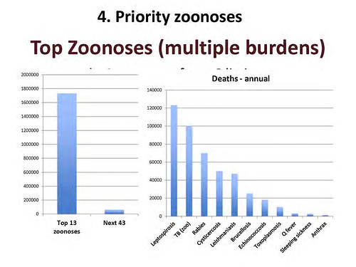 Top zoonoses calculated by ILRI's Delia Grace in 2012