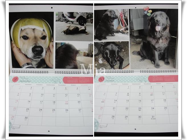 2013年掛曆-11
