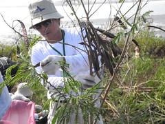 野FUN生態實業公司負責人賴鵬智協助嘉義林管處社區陪伴。