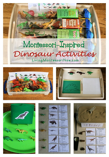 Montessori-Inpsired Dinosaur Activities Using Dinosaur Replicas
