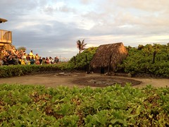 Germaine's Luau - Pork Pit