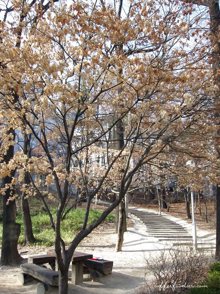 Ewha Women's University Fashion Row Seoul SOUTH KOREA
