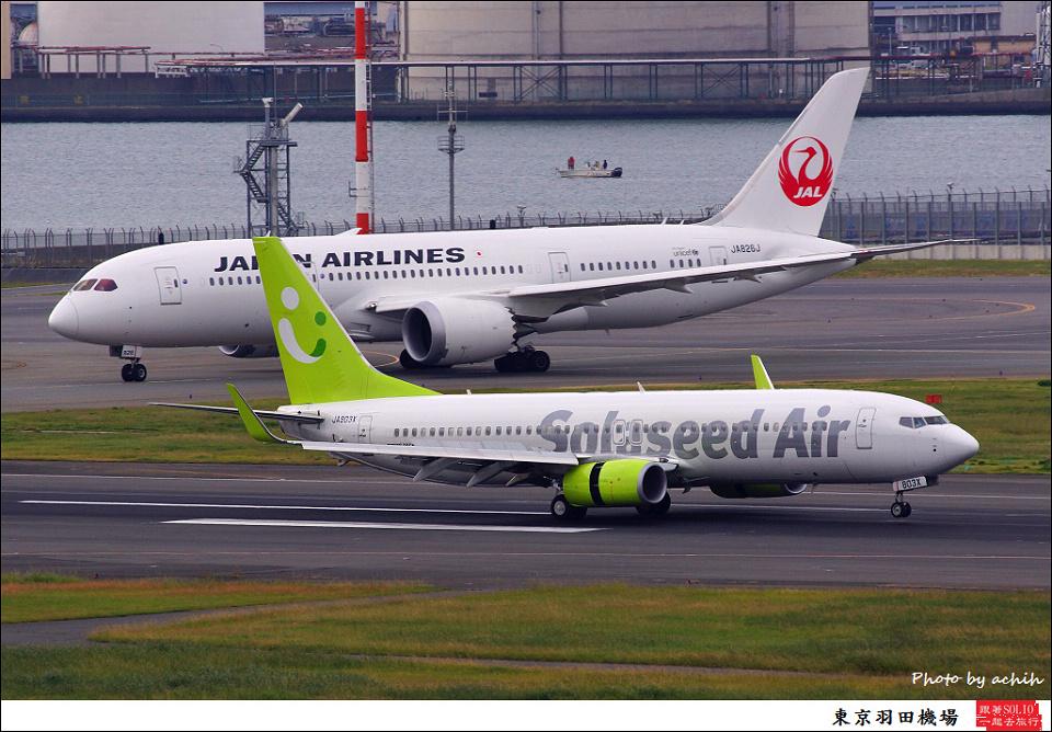 Solaseed Air / JA803X / Tokyo - Haneda International