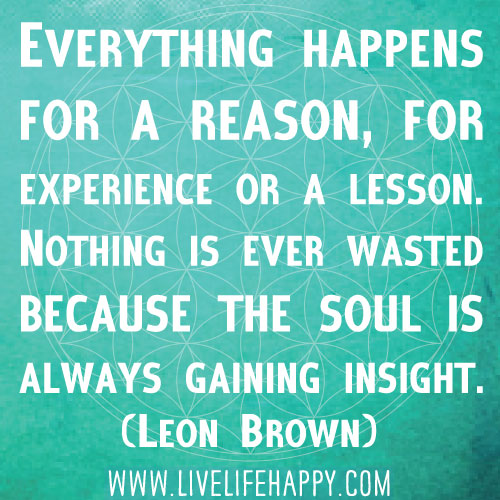 Everything happens for a reason, for experience or a lesson. Nothing is ever wasted because the soul is always gaining insight. - Leon Brown