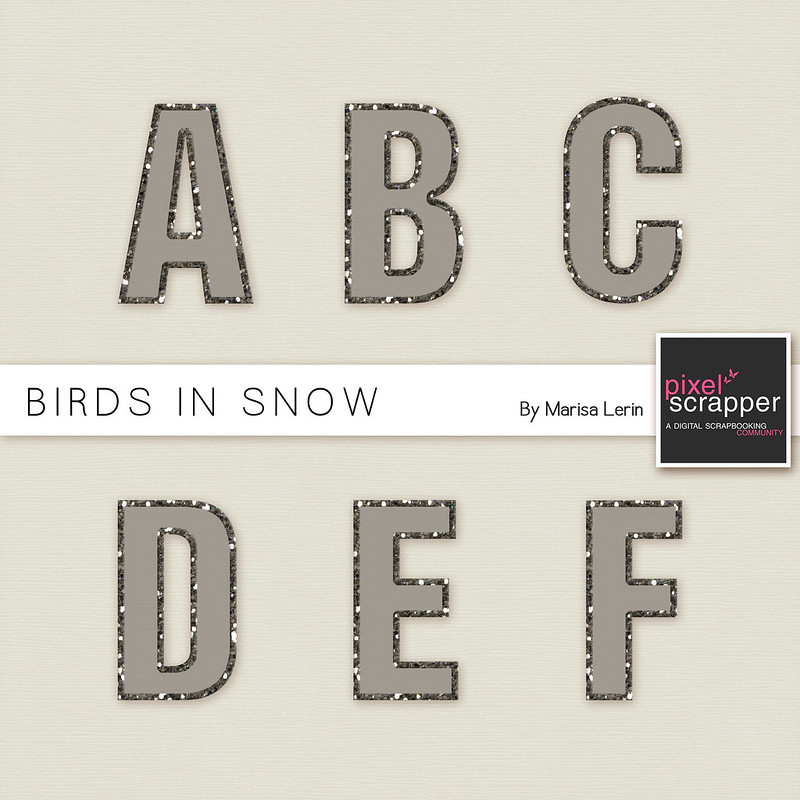 Birds in Snow Facebook Freebie