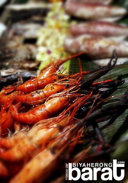 seafood in real quezon shrimp