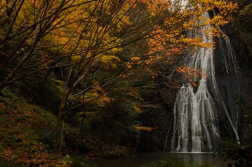 longexposure autumn river landscape waterfall ngc 日本 japanesemapleleaves 島根県 allxpressus 大田市 02景色