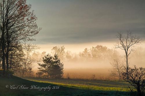 autumn fall fog sunrise dawn mood tn tennessee greatsmokymountains cadescove gsmnp canon7d endlessreach1 carlsshaw carlshawphotography