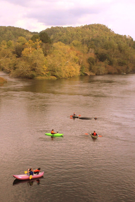 Kayaking in the Hiwassee River