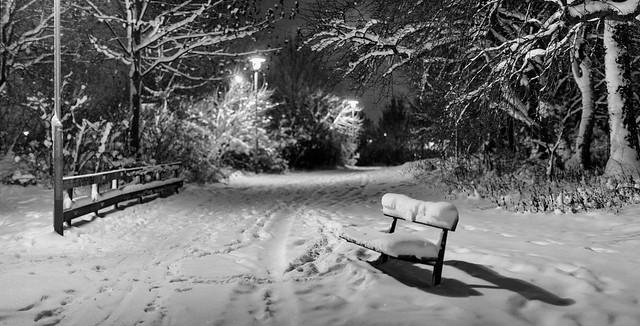 Winter in Uppsala