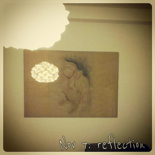 Nov: 7 reflection #fmsphotoaday #reflection