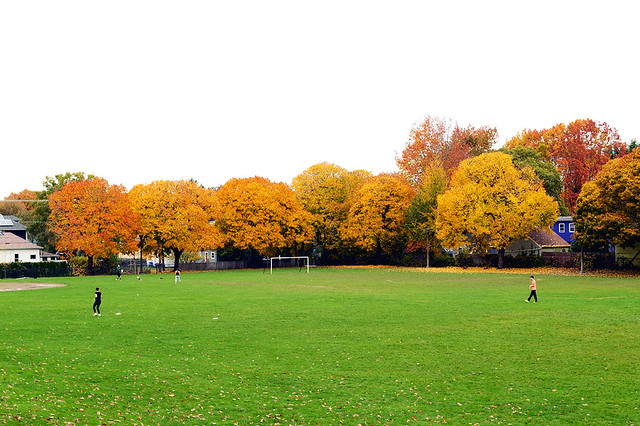 Colorful Soccer Field