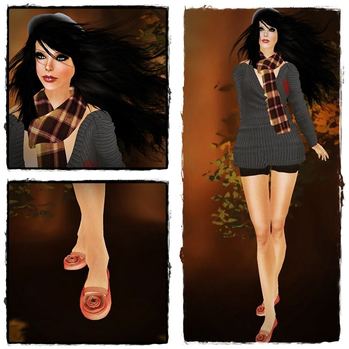 Blog 11-11-12 Conjunto 2